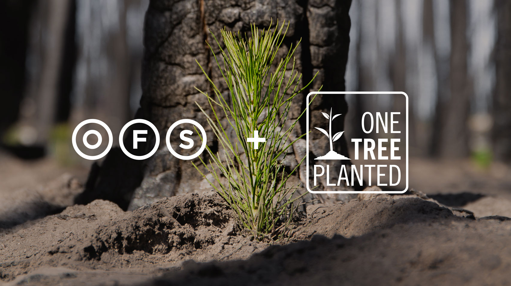 OFS and One Tree Planted