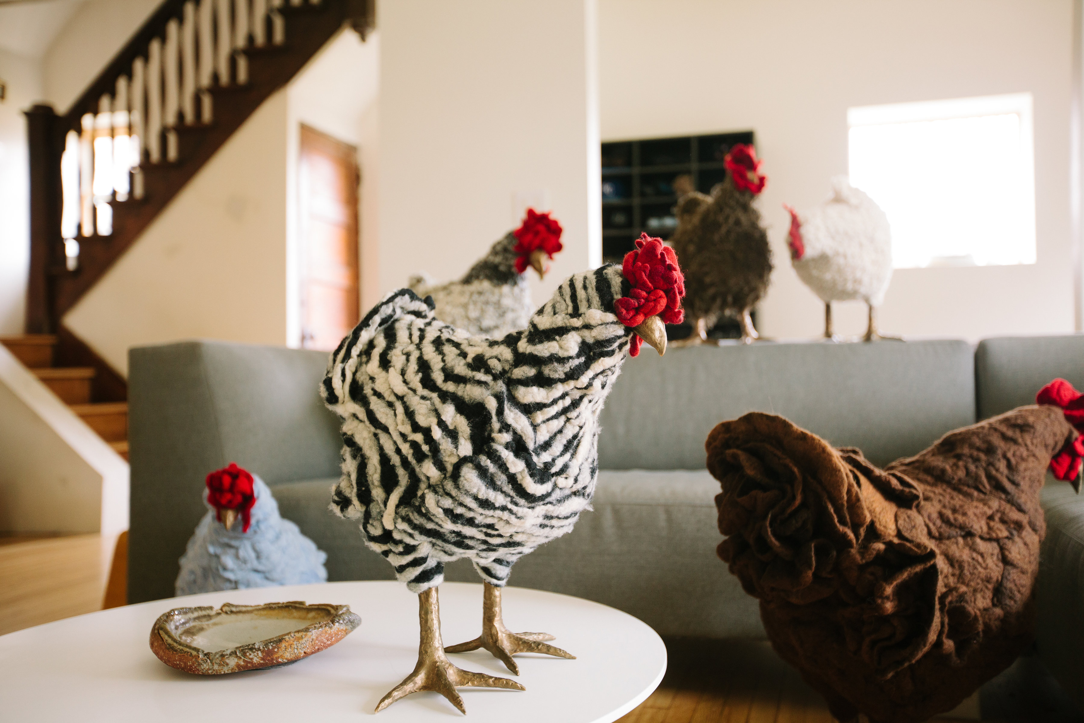 Chickens in the living room