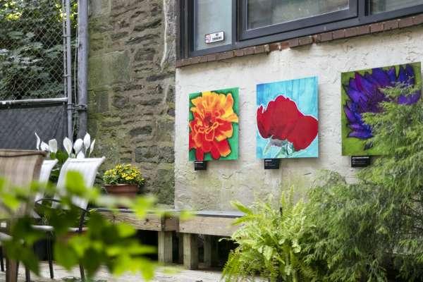 Artwork and greenery in alleyway, Philadelphia, PA