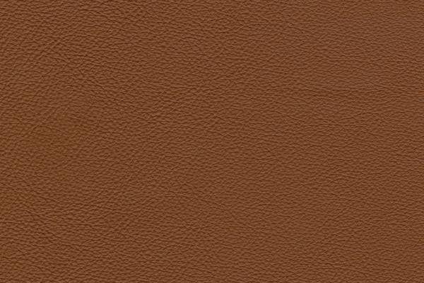 Basic Terracotta