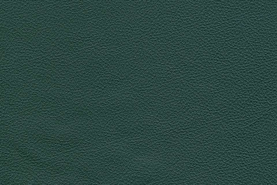 Basic Evergreen