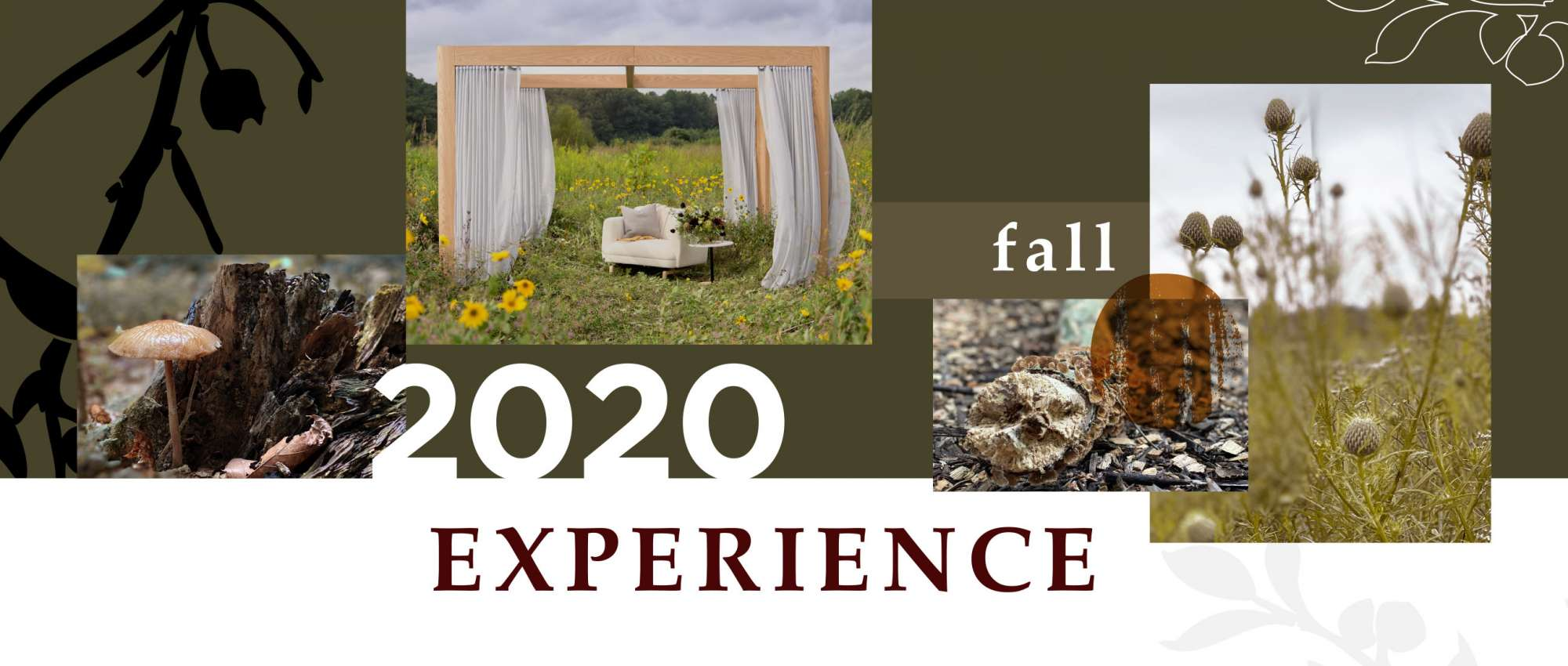 Fall 2020 Experience