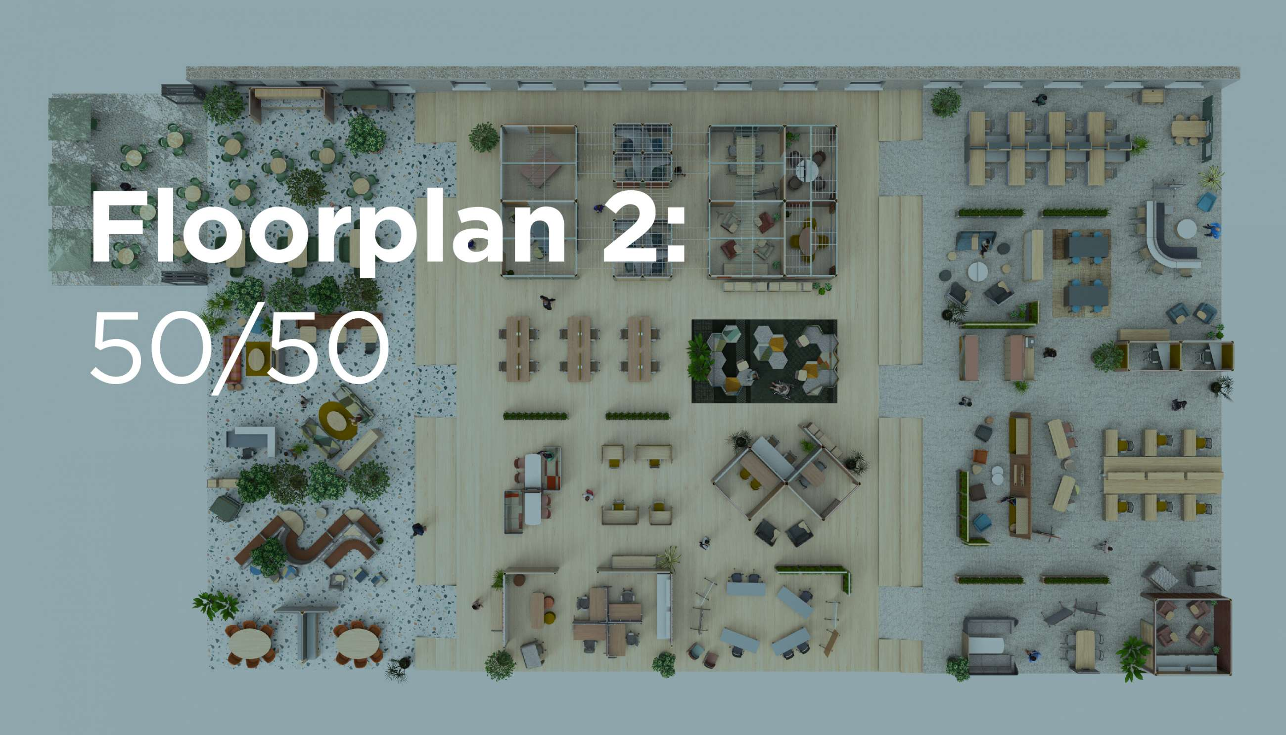 Floorplan 2: 50/50