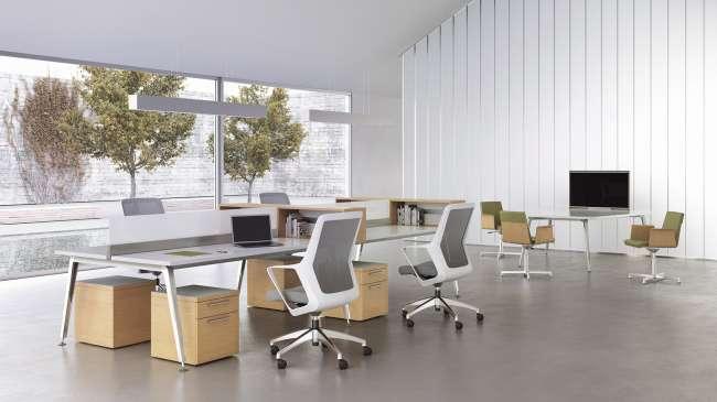 Eleven Workspace, Flexxy, And Madrid