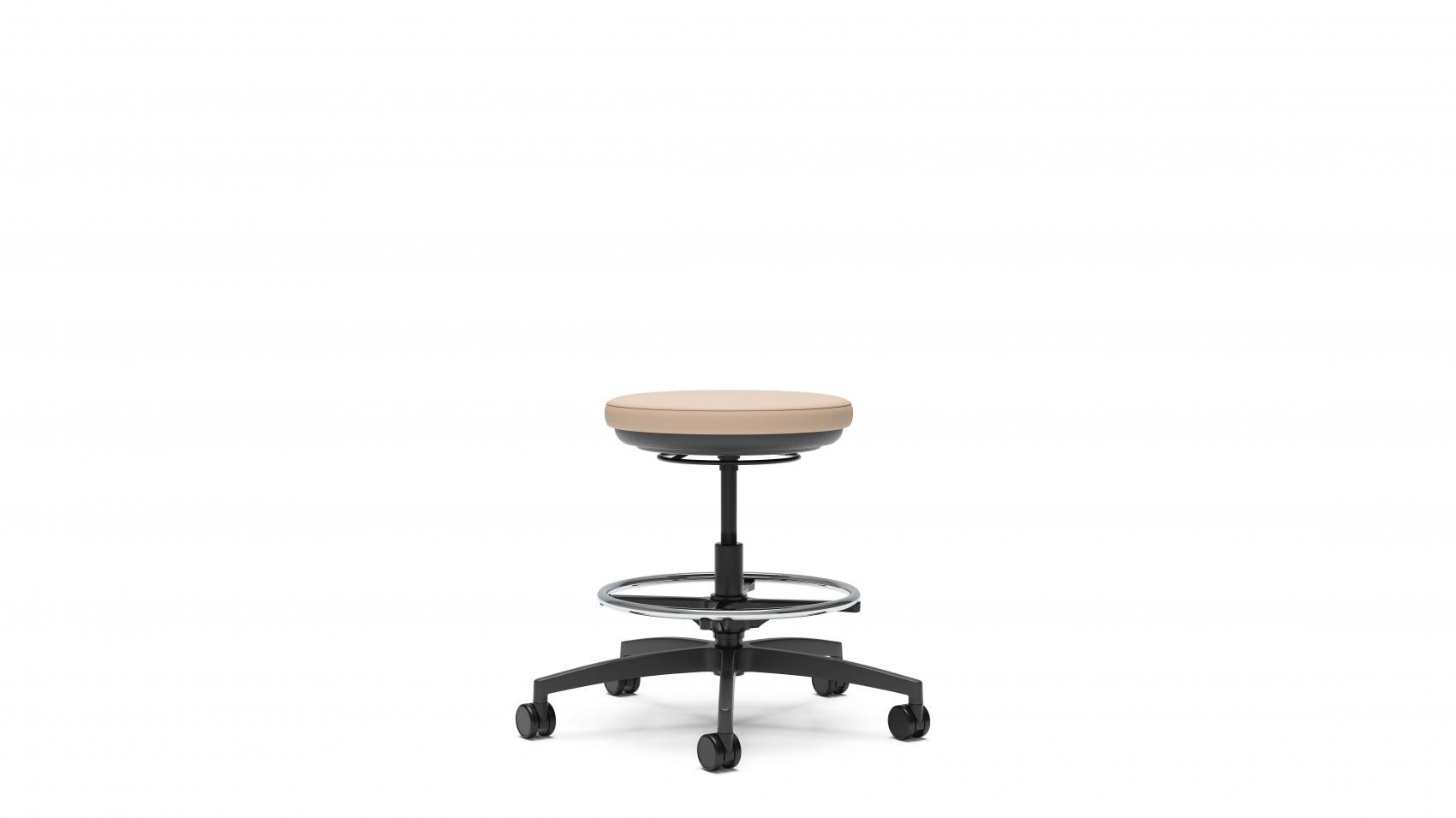 Stray physician's stool